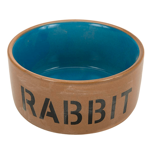 La web más completa sobre el mundo de los conejos. 12
