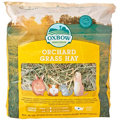 Orchard Grass Heno para mascotas pequeñas Oxbow, 1,13 kg