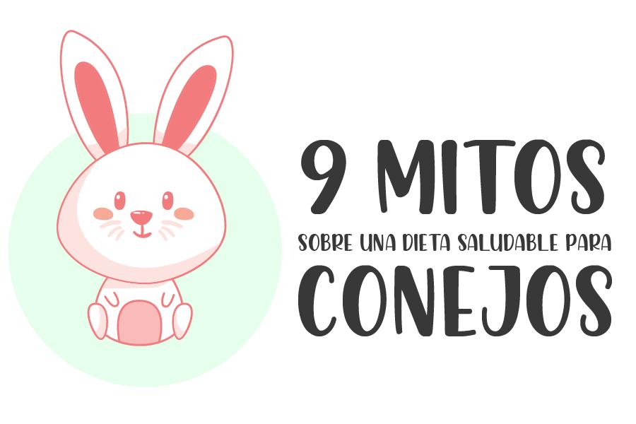9 mitos sobre una dieta saludable para conejos 2