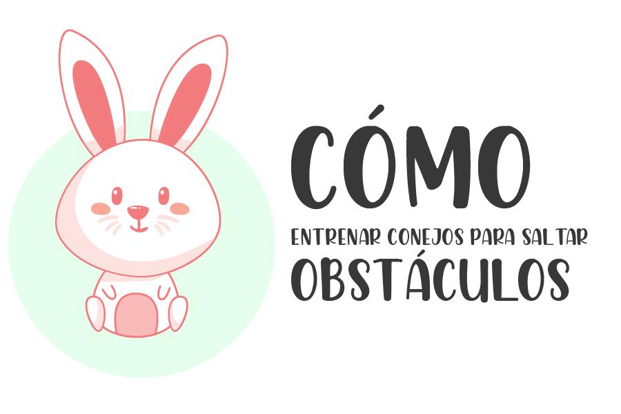 Cómo entrenar conejos para saltar obstáculos 1